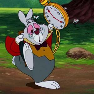 Een konijn in de tuin? Ik dacht even Alice in Wonderland te zijn.