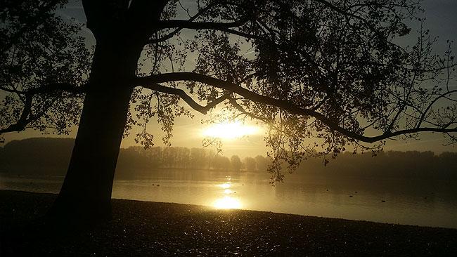 Op deze mistige ochtend lag de Sloterplas in prachtig zonlicht