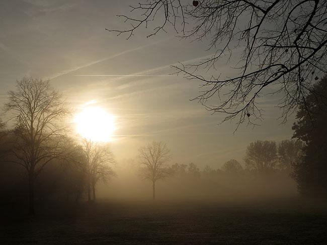 Kunstwerk Groot Landschap in de mist. Niet te zien, maar het staat er toch echt...