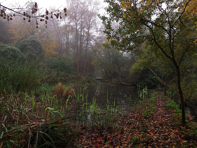 Een klein deel van Heemtuin Sloterpark