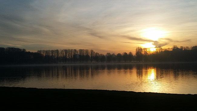 Nieuwjaarsdag 2016, Sloterplas - Een ochtendwandeling door het Sloterpark
