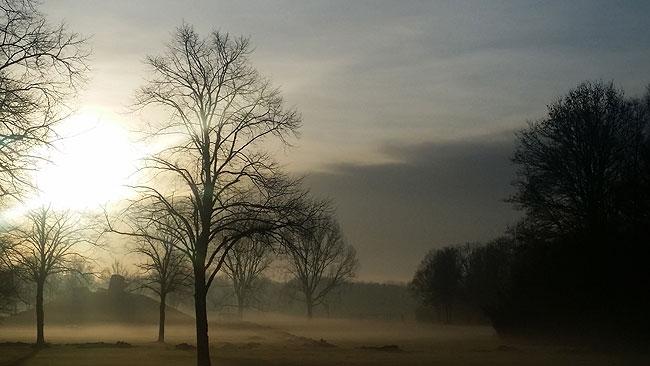 Nieuwjaarsdag 2016, Kunstwerk Groot Landschap in nevel gehuld - Een ochtendwandeling door het Sloterpark