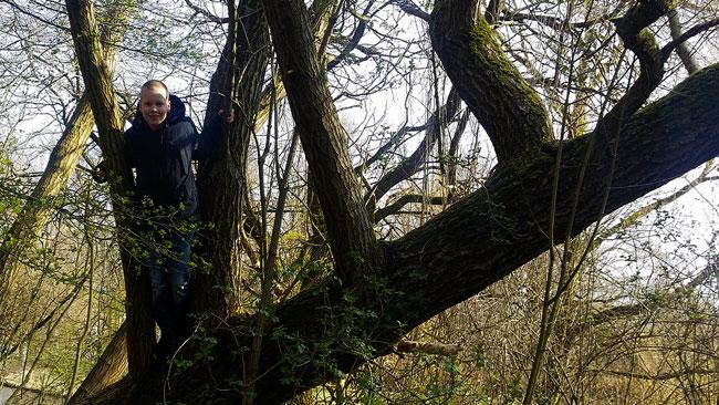 Genoeg bomen om in te klimmen in het Ruige Riet