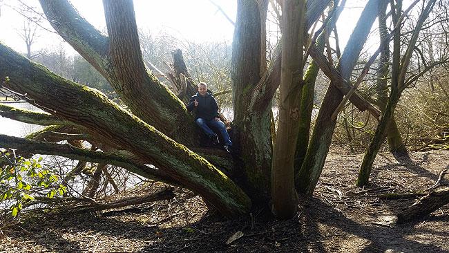 Bomen in allerlei gedaantes in het Ruige Riet.