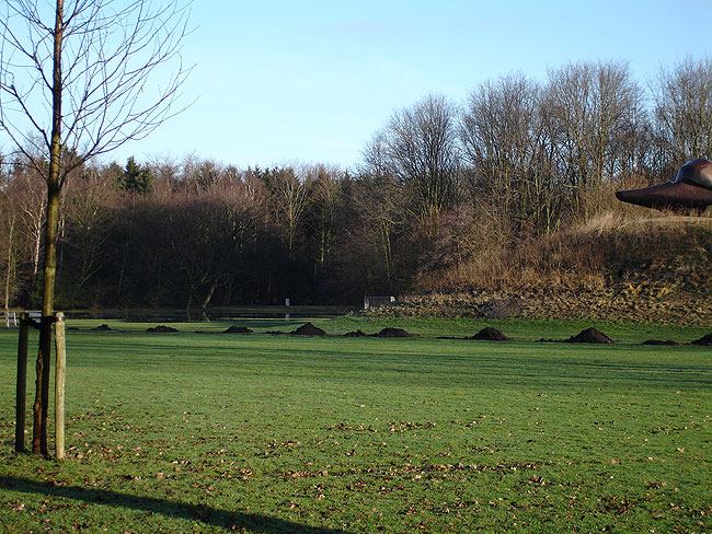 Afwatering Sloterpark
