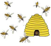 Bijen naar de bijenkorf getrokken