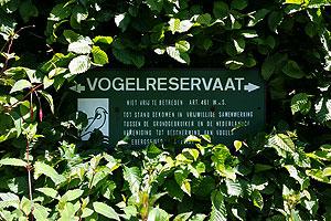 Het bijenpark is tevens een waar vogelreservaat