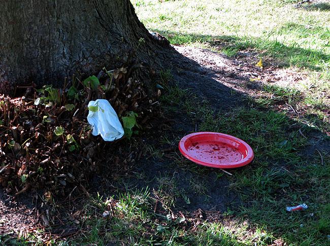 Restanten van een feestje in het park: plastich eetbordjes, papier...