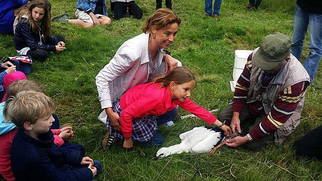 Ooievaars ringen Vondelpark - Ook prinses Marilène was met haar dochter aanwezig