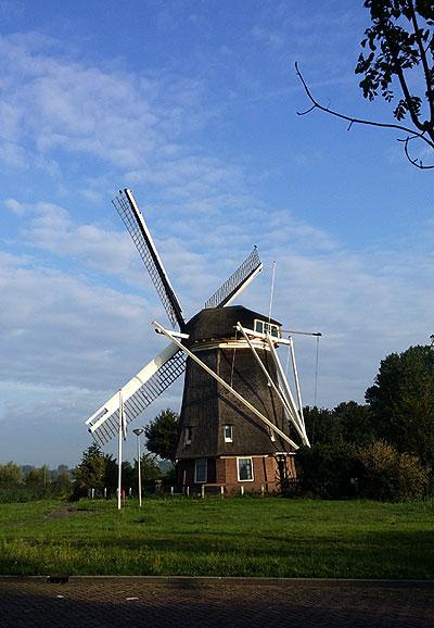 Bij stadsnatuur hoort een molen: Osdorperpolders