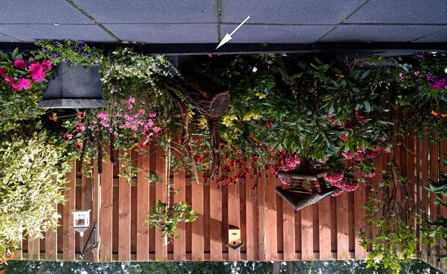 Tuin ondersteboven