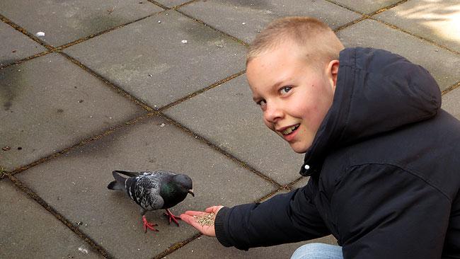 Kelvin voert duif Tinus